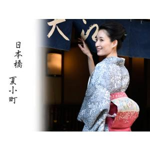 本格派夏きもの絹紅梅小紋日本橋 竺仙鑑製 美しい着物掲載柄染だし承ります|shikisaikan