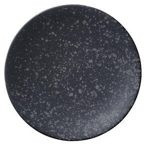 大皿 丸皿 30cm 銀影 おしゃれ 和食器 業務用 美濃焼 shikisaionline