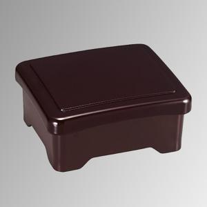うな重箱 溜内朱 うなぎ 重箱 容器 器 ひつまぶし 鰻重 土用の日 お重 光月丼重 日本製