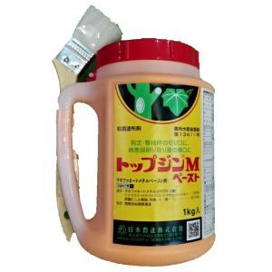 トップジンM (ペ)ゆ合剤200gの関連商品3