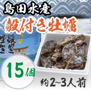 広島県産 島田水産 殻付き牡蠣  15個|shimadasuisan