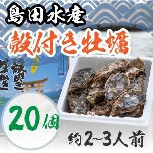 広島県産 島田水産 殻付き牡蠣 20個|shimadasuisan