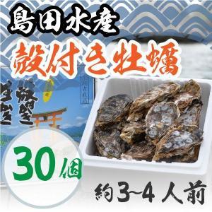 広島県産 島田水産 殻付き牡蠣 30個|shimadasuisan