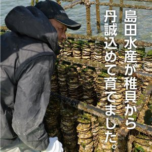 広島県産 島田水産 殻付き牡蠣 50個|shimadasuisan|03