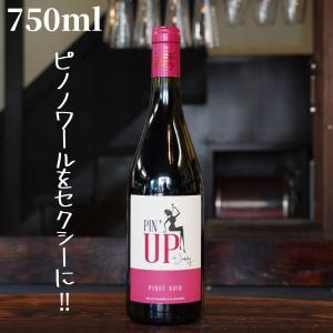 マス・ド・ジャニーニ ピナップ ド ジャニーニ  750ml 自然派ワイン オーガニックワイン 赤 shimamotosaketen