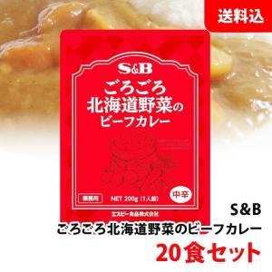 送料無料 野菜もしっかりビーフカレー中辛200g 10袋入×2ケース(20食)|shimamotoya