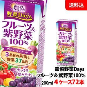 送料無料 雪印メグミルク 農協野菜Daysフルーツ&紫野菜ミックス 200ml 4ケース(72本) shimamotoya