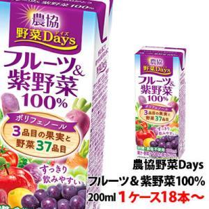 雪印メグミルク 農協野菜Daysフルーツ&紫野菜ミックス 200ml 1ケース(18本)〜 shimamotoya