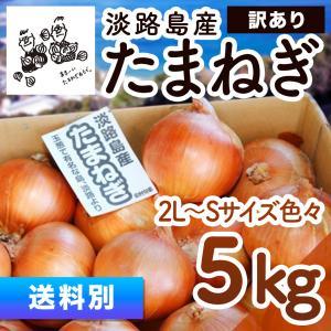 淡路島産 玉ねぎ 5kg 【訳あり】