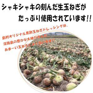 黒酢玉ねぎドレッシング 淡路島 島村兄弟オリジナル 500ml ペットボトル shimamura-kyoudai 02