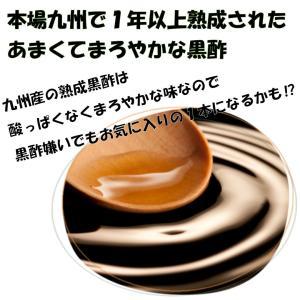 黒酢玉ねぎドレッシング 淡路島 島村兄弟オリジナル 500ml ペットボトル shimamura-kyoudai 03