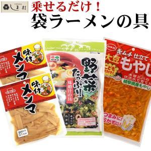 インスタントラーメンの具セット 約4人前 即席 アレンジ 袋ラーメン メール便 送料無料 メンマ もやし 1000円ポッキリ|shimamura-miso