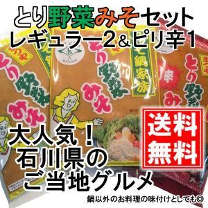 とり野菜みそ レギュラー2袋 & ピリ辛1袋 セット 各200g まつや メール便 送料無料 鍋 味噌ラーメン とり野菜味噌 とり野菜 1000円ポッキリ|shimamura-miso