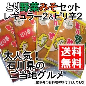 とり野菜みそ レギュラー2袋& ピリ辛2袋 セット 各200g まつや メール便 送料無料 鍋 味噌ラーメン とり野菜味噌