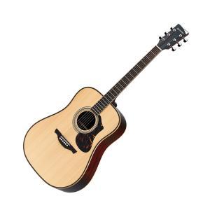 HISTORY ヒストリー NT-L3  NAT アコースティックギター〔フォークギター〕 日本製 NTL3|shimamura