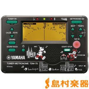 YAMAHA ヤマハ TDM-75DMN3 ミッ...の商品画像