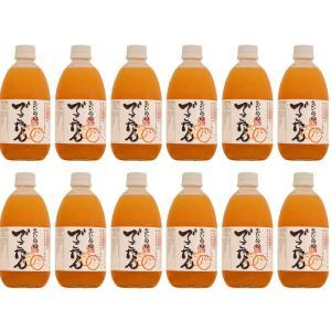 えひめのでこたんストレートジュース 500ml 【12本】|shimanami|02