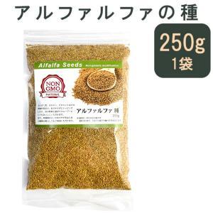 アルファルファ 種 250g 高品質 オーストラリア産 (Alfalfa 野菜種 あるふぁるふぁ s...