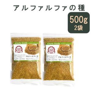 アルファルファ 種 500g 高品質 オーストラリア産 (Alfalfa 野菜種 あるふぁるふぁ s...