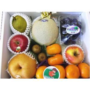 ギフト フルーツ 詰め合わせ ご贈答用 御祝 御礼 お供え 送料無料 静岡温室マスクメロン 1.5kg入り 季節のフルーツ 詰め合わせ A|shimazaki-nouen|05