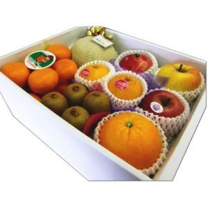 ギフト フルーツ 詰め合わせ ご贈答 御祝 御礼 お供え 送料無料 静岡温室マスクメロン 1.2kg入り 季節のフルーツ 詰め合わせB