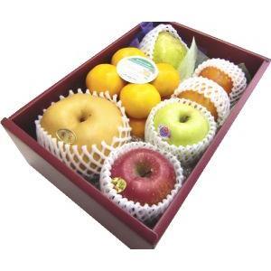 ギフト フルーツ 詰め合わせ ご贈答 御祝 御礼 お供え 送料無料 季節のフルーツ詰め合わせC