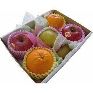 ご贈答 御祝 御礼 お供え 季節のフルーツ詰め合わせS