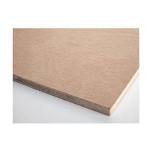 ベニヤ板(FSC普通合板)600×900mm 厚み5.5mm JAS F合板森林認証取得製品