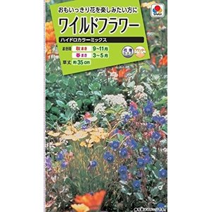 タキイ種苗 ワイルドフラワーハイドロカラーミックス shimizunet004