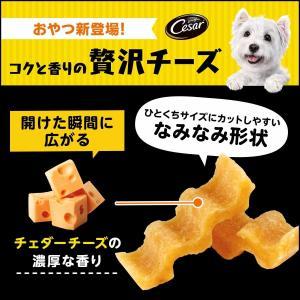 シーザー シーザースナック チェダー香るコクと香りの贅沢チーズ 100g