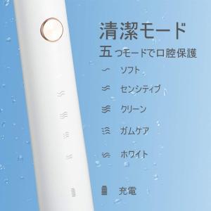 電動歯ブラシ APIYOO P7 音波歯ブラシ 充電式 ソニック 低騒音 IPX7防水 五つモードと...