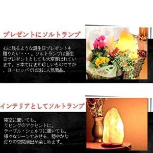 高品質 Homankit ヒマラヤ岩塩ランプ 2?3kg 空気浄化と癒しの灯り ソルトランプ 天然塩製|shimizusyouten01