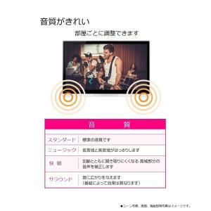 パナソニック 19V型 液晶 テレビ プライベート・ビエラ UN-19F7-K ハイビジョン|shimizusyouten01