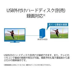 シャープ 24V型 液晶 テレビ AQUOS 2T-C24AC2 ハイビジョン 外付HDD録画対応 2画面表示 2018年モデル|shimizusyouten01