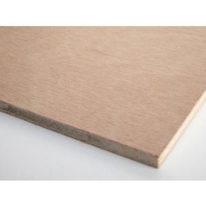 (木芸社) ベニヤ板 (普通合板) JAS F合板 (正規品)(300×300mm 厚み5.5mm)
