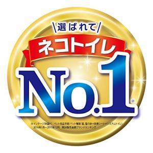 デオトイレ 1週間消臭・抗菌ふんわり香るシート ナチュラルガーデンの香り 10枚入 shimizusyouten01