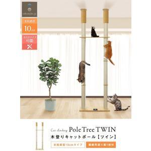 ottostyle.jp 猫爪とぎ 木登りキャットポール ツイン 突っ張り(つっぱり)式 高さ240?255cm 拡張可能 運動不足解消 遊|shimizusyouten01