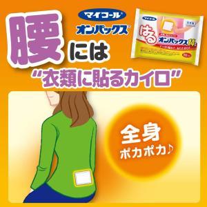 ケース販売 はるオンパックス 貼るカイロ 240個入 (30個入×8個) 日本製/持続時間約14時間