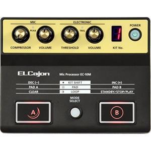 Roland / EC-10M ローランド エルカホン マイクプロセッサー shimizusyouten01