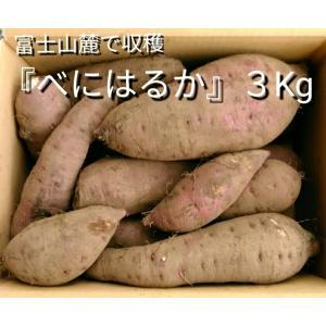 べにはるか3kg 富士山麓の採れたて「さつまいも」 shimizusyouten01