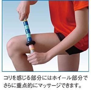 NISHI(ニシ・スポーツ) ケア用品 ケアスティック ショートタイプ(ホイール付) NKS8050C