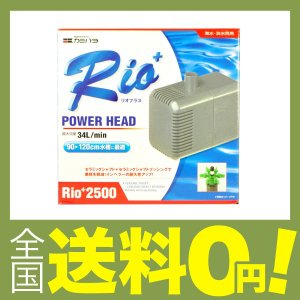 カミハタ Rio+2500 (50Hz) shimoyana