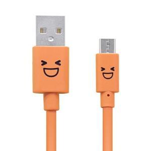 【商品コード:12005381977】USB(Aタイプ:メス)のインターフェースを持つAC充電器やモ...