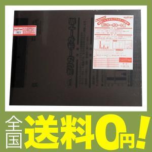 光 ポリカーボネート樹脂板(UV剤入) ブラウ...の関連商品1