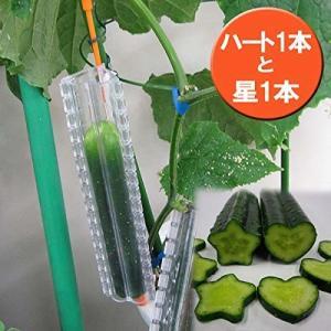 カネコ種苗 きゅうりの型 デコきゅう星とハート2...の商品画像