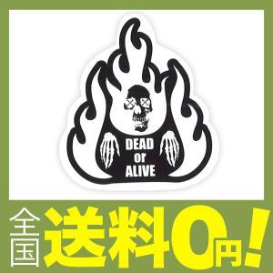 【商品コード:12016925089】DEAD or ALIVE