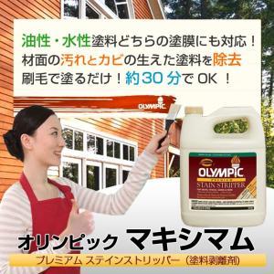 塗料剥離剤 プレミアムステインストリッパー 3.78L|shingushoko