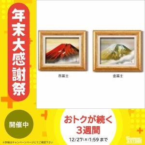 伊藤渓山 日本画額F6金の商品画像|ナビ