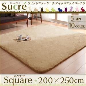 絨毯 ラグ Sucre 長方形 マット スクエア 床暖対応 シュクレ じゅうたん ラグマット カーペット 200×250cm シャギーラグ ラグカーペット ダイニングラグ shiningstore