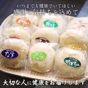 ギフト おやき 帰省土産 9種詰め合わせセット|shinjushoku|03